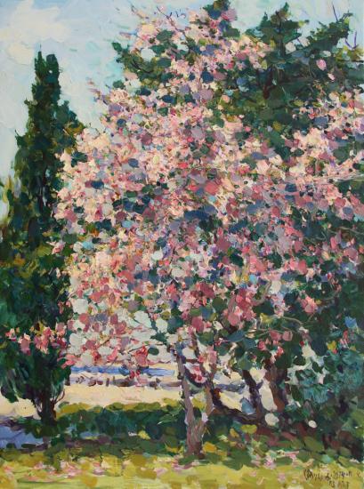 `Тюльпановое дерево на Набке в Ялте. Магнолия.